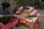 मन्त्रीपरिषद्को बैठक: ट्रेड युनियनको निर्वाचन स्थगित, ३ जना सचिबमा बढुवा