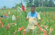 बारीमै ओइलाए फूल